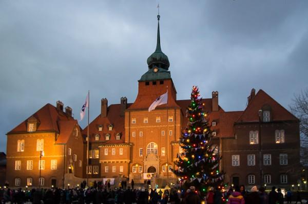 Sveriges julgran, Rådhusgranen 2014