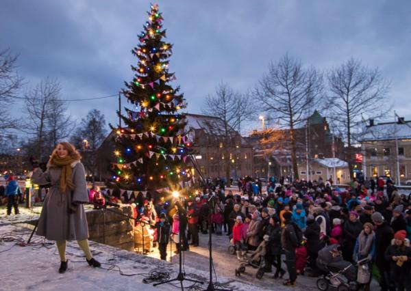Sveriges julgran 2014